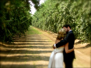almond orchards make good wedding venues